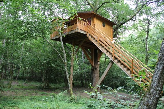 La cabane d'Elodie © Hélène