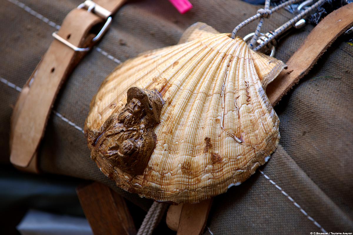 Coquille de pèlerin © C.Bousquet - Tourisme Aveyron