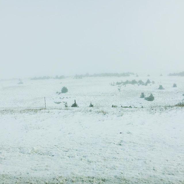 Neige sur le Larzac @bouleguecollegue