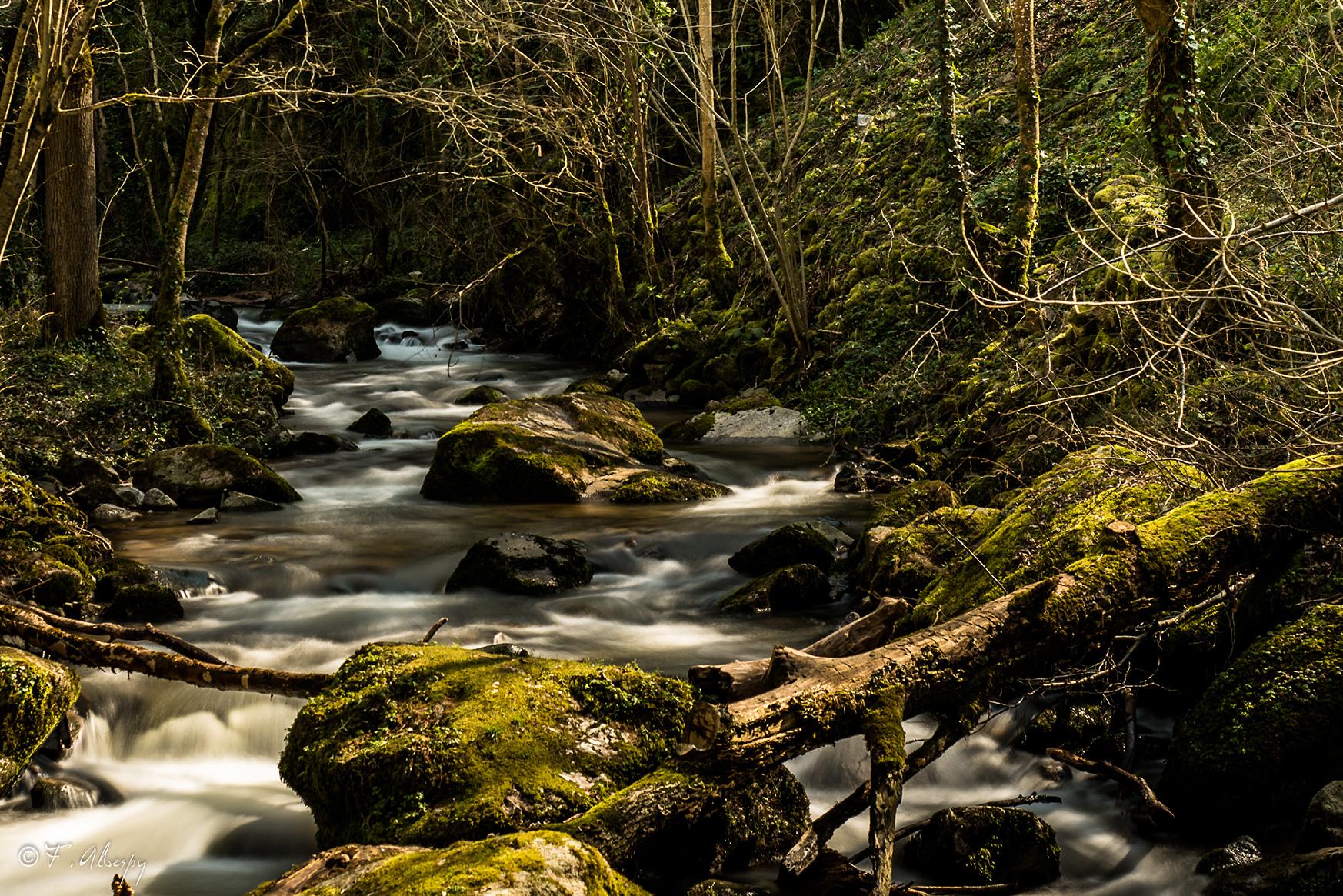Ruisseau, Peyrusse-le-Roc © F. Albespy