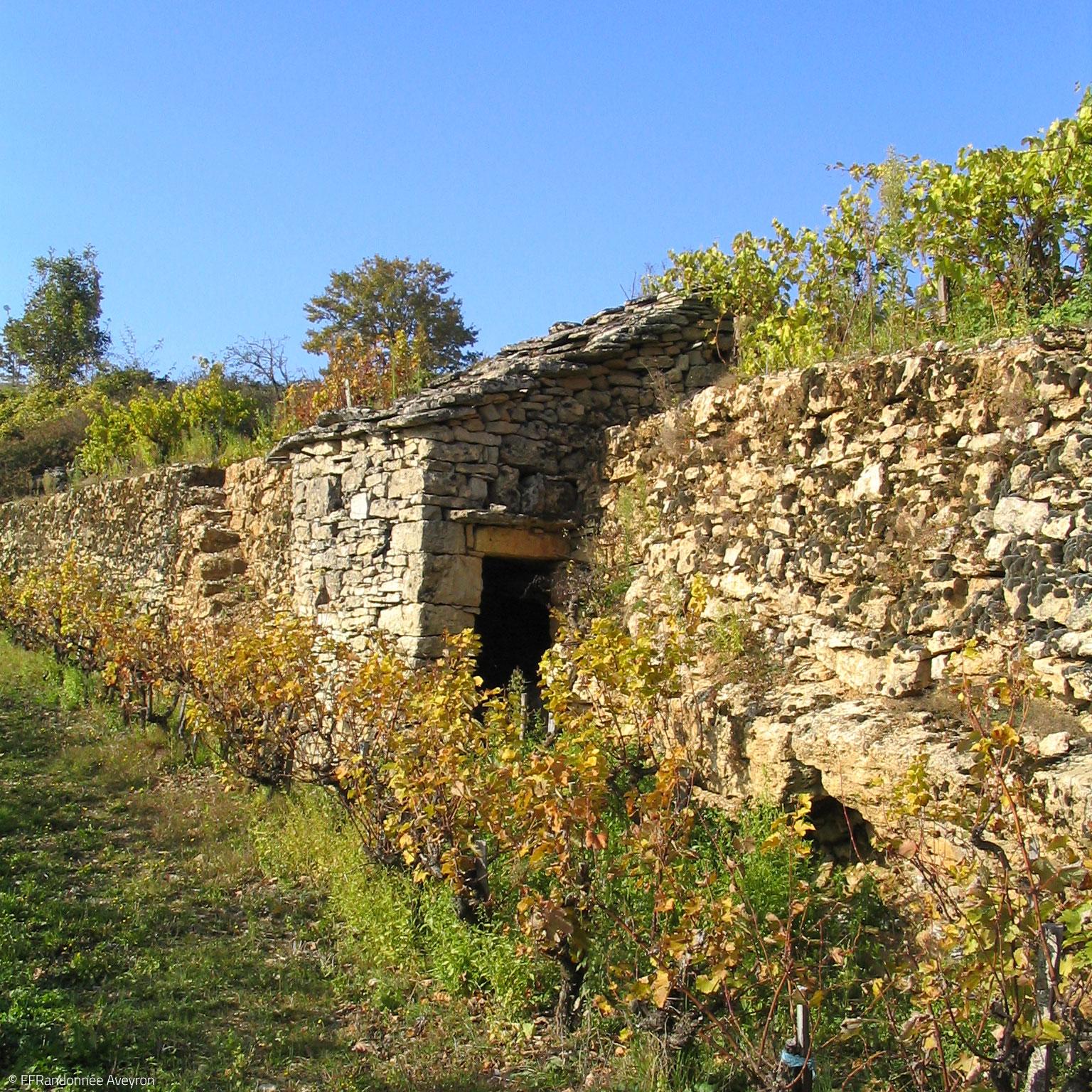 Vigne © FFRandonnee Aveyron