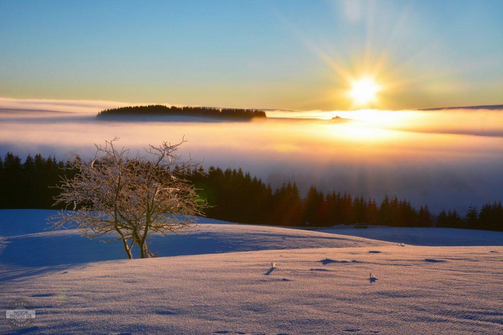 La campagne en Aveyron : l'Aubrac sous la neige © Passion Photos Séb