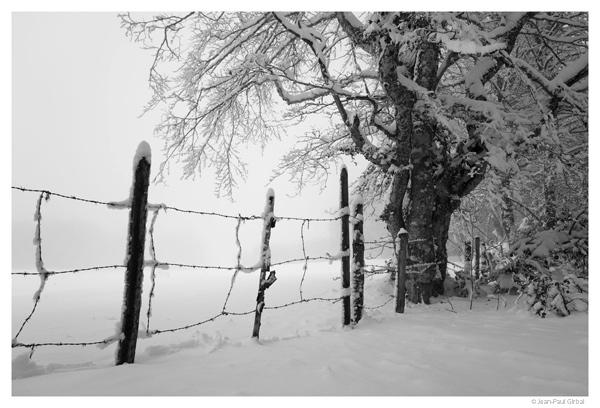 Aubrac, Aveyron © Jean-Paul Girbal
