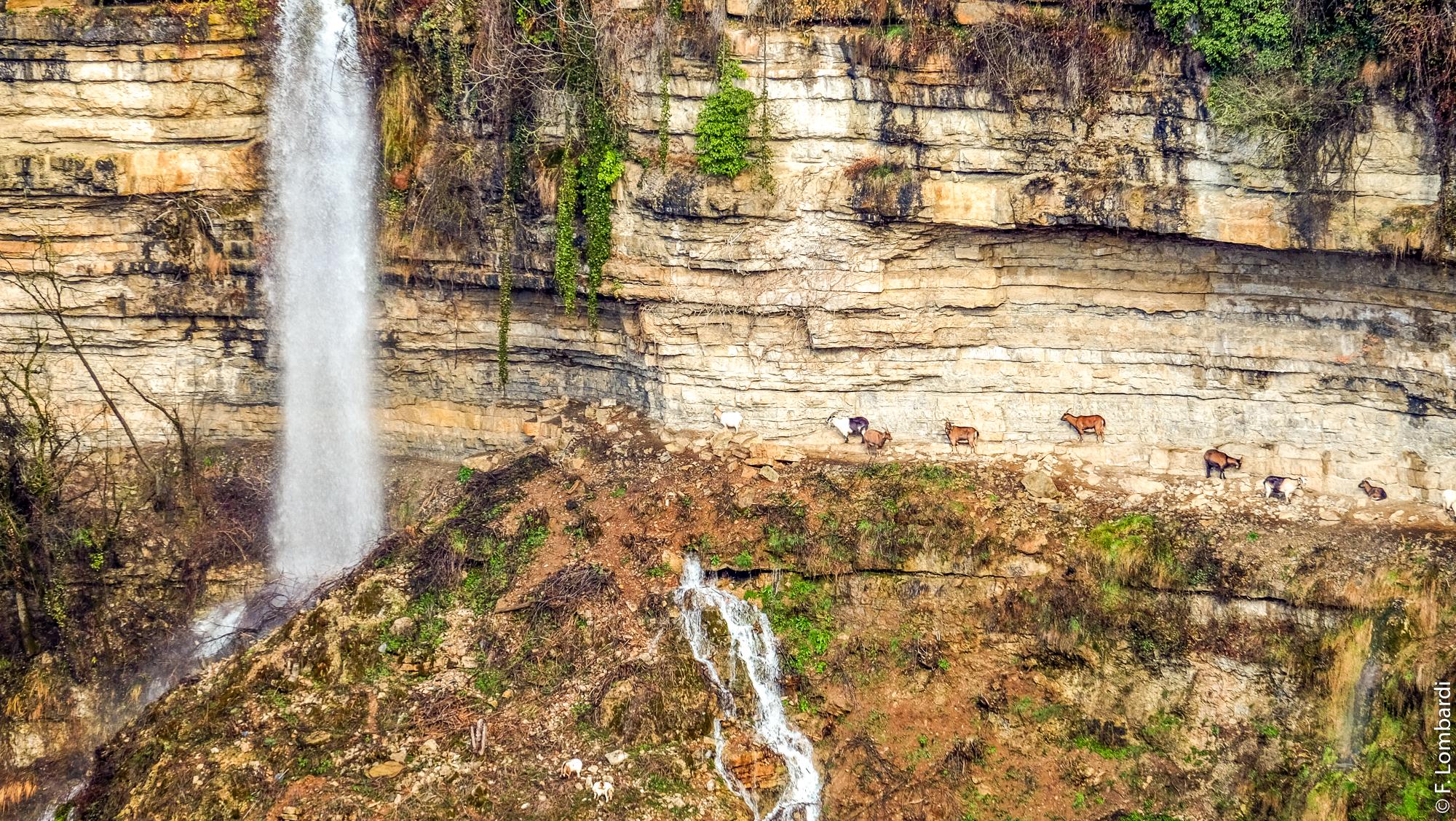 La cascade éphémère du canyon de Bozouls © F. Lombardi - Mairie de Bozouls